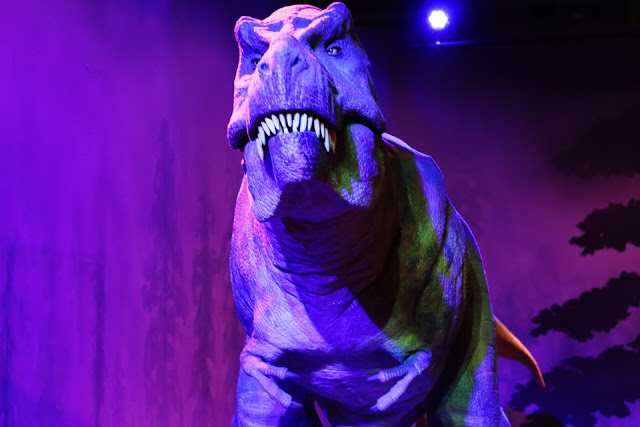 what to do with kids in london: natural history museum
